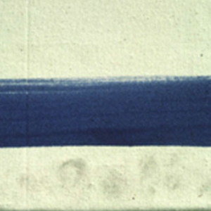 Detail of fingerprints on an acrylic paint film © Tate 2006